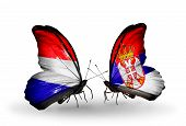image of holland flag  - Two butterflies with flags on wings as symbol of relations Holland and Serbia - JPG
