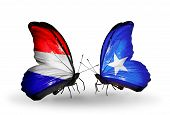stock photo of holland flag  - Two butterflies with flags on wings as symbol of relations Holland and Somalia - JPG