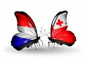 Two Butterflies With Flags On Wings As Symbol Of Relations Holland And Tonga
