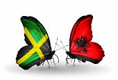 Two Butterflies With Flags On Wings As Symbol Of Relations Jamaica And  Albania