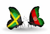 Two Butterflies With Flags On Wings As Symbol Of Relations Jamaica And  Afghanistan