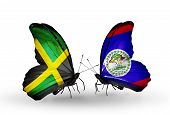 Two Butterflies With Flags On Wings As Symbol Of Relations Jamaica And  Belize