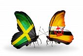 Two Butterflies With Flags On Wings As Symbol Of Relations Jamaica And  Brunei