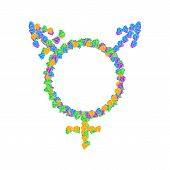 Transgender symbol icons