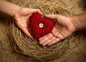 Man And Woman Holding Knitted Heart In Birds Nest