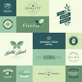 Set of flat design icons for natural organic products