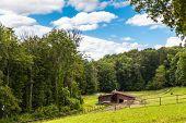 Pasture Near Schaffhausen By The Hiking Trail