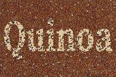 pic of quinoa  - Red and white Quinoa with text Quinoa - JPG