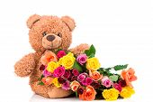 image of bunch roses  - Bunch of mix color roses and a teddy bear on white background  - JPG