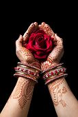 picture of pooja  - Woman hands with henna holding red rose isolated on black background with clipping path - JPG
