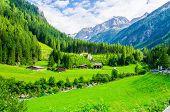 Постер, плакат: Alpine landscape with green meadows Alps Austria