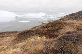 stock photo of iceberg  - Arctic landscape in Greenland around Disko Island with icebergs - JPG