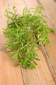 stock photo of willy  - Freshly picked Galium aparine in bunch on wooden background.