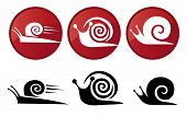 Snail. Vector Silhouette Icon Set.