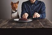 Постер, плакат: Man Cuts Piece Of Steak For Lovely Dog