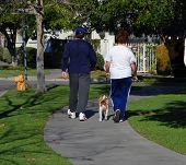 stock photo of obese man  - a man and a woman walk their dog - JPG