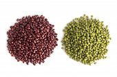 Legumes Collection