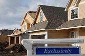 Exclusive House Market