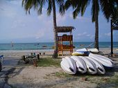 Rows Of Canoes At Beach