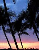 Kona Sunset Hawaii 4