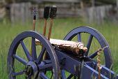 Cannon In Field
