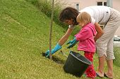 stock photo of planting trees  - Mother and her 2 - JPG