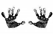 image of dna fingerprinting  - Black Child - JPG