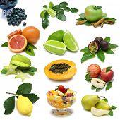 Fruit Sampler of various fresh fruits