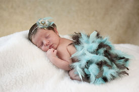 stock photo of newborn baby girl  - A studio portrait of a beautiful one week old baby girl sleeping wearing a blue and brown boa and flower headpiece - JPG