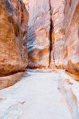 Siq - Narrow Passage To Ancient City Petra