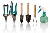 image of spayed  - Five gardening tools and one spaying bottle - JPG