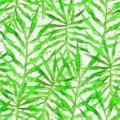 Tropical Seamless Pattern. Watercolor Thorny Palm Leaves, Japanese Bamboo. Green Exotic Swimwear Des poster