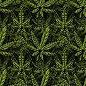 Seamless Textile Pattern With Natural Bio Eco Plant Leaves Of Marijuana, Cannabis, Weed, Hemp Cbd Oi poster