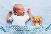 Baby Sleeping With Kitten On Blue Knitted Blanket. Child And Cat. Kids And Pets. Newborn Kid With Hi poster