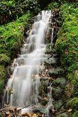 Long Exposure Of A Waterfall In Ninesprings Waterfall Park In Yeovil In Somerset poster