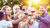 Multiracial Young Friends Enjoying Harvest Time Together At Farm House Winery Drinking Red Wine -  H poster