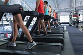 Side view of diverse Fit people exercising together on treadmill in fitness center. Bright modern gy poster