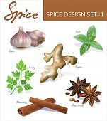 Spice images design set 1. Vector illustration.