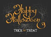 Happy Halloween Lettering. Happiness Halloweens Background With Text And Horror Spider Webs Silhouet poster