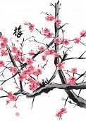 Vector Plum Blossom Translation: Plum