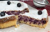 Tasty Blackcurrant Cake