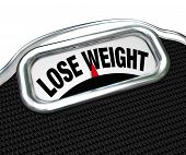 stock photo of obesity  - The words Lose Weight on the display of a scale to tell you you need to go on a diet to drop pounds and trim fat to improve your health - JPG