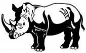 Rhinoceros Black White