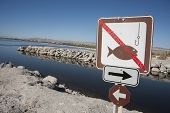 no fishing Salton sea