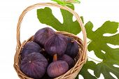 Busket Of Fresh Figs With Leaves Isolated On White Background