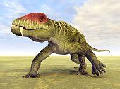 Doliosauriscus