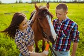 stock photo of feeding horse  - young adult couple standing and feeding horse on field - JPG