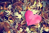 a discarded paper heart