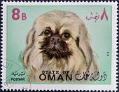 stamp printed in Oman shows a Pekingese dog breed