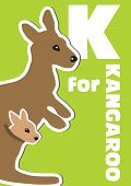 stock photo of kangaroo  - K for the Kangaroo an animal alphabet for the kids - JPG
